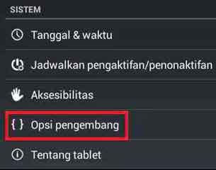 Setting Opsi Pengembang pada ponsel Android