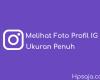 cara-melihat-foto-profil-ig-ukuran-penuh-tanpa-aplikasi